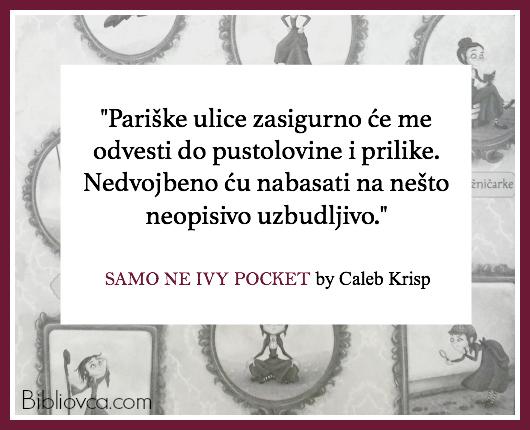 ivypocket-quote-1