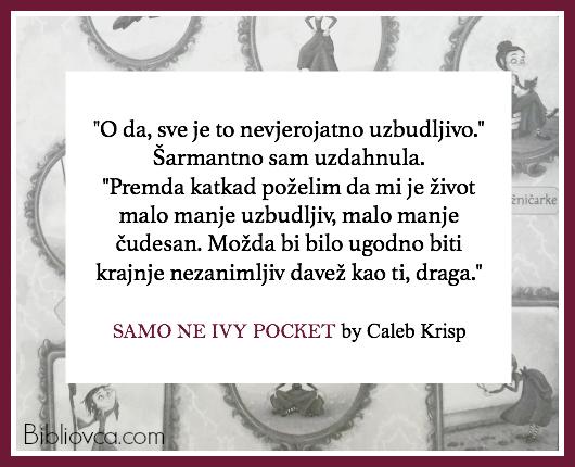 ivypocket-quote-2